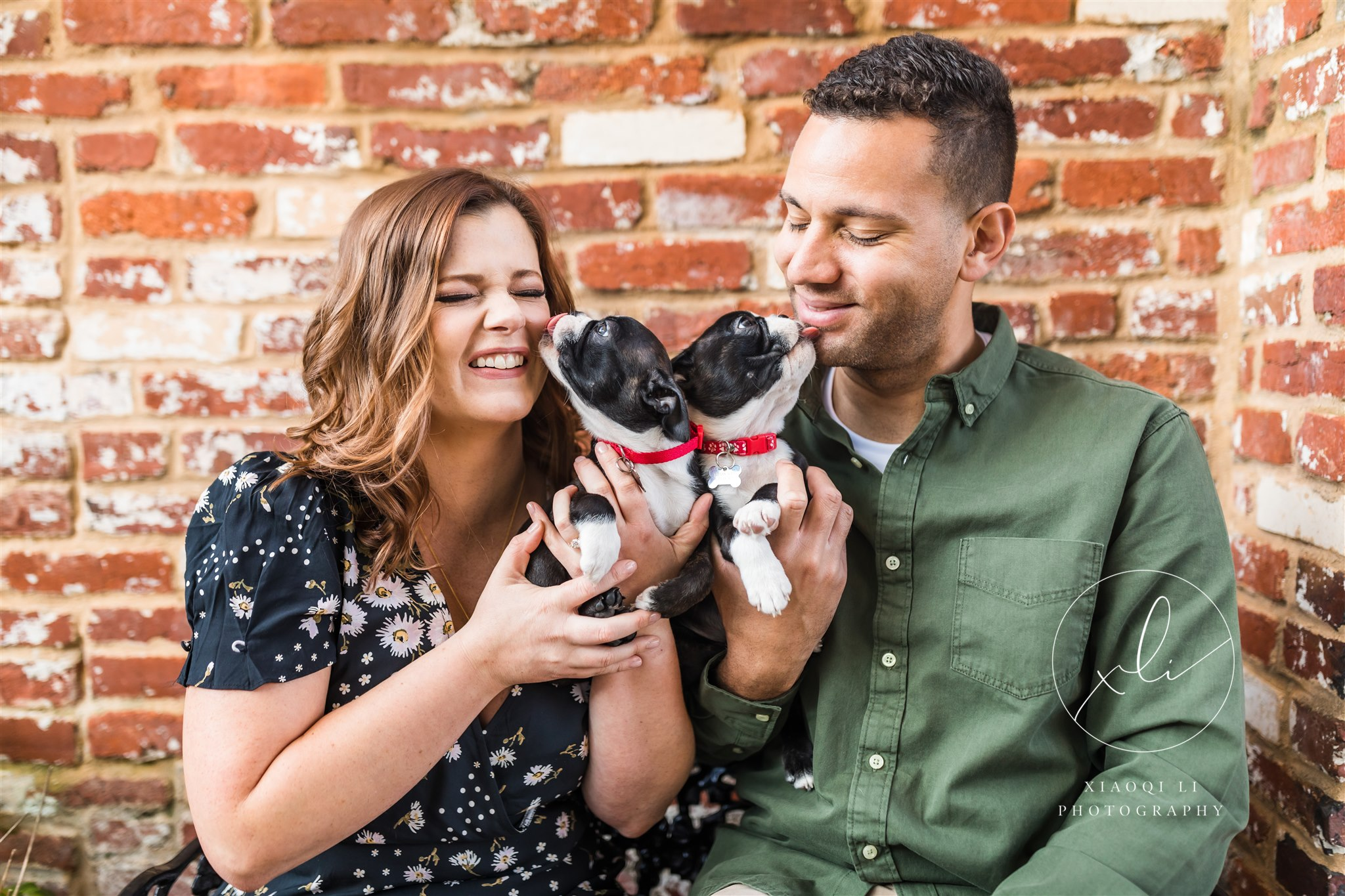 man and woman holding puppies and laughing in Washington DC engagement session